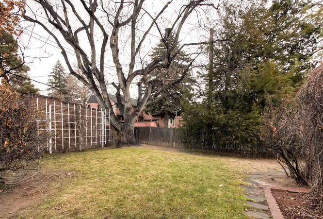 34 Albion Street Denver CO-small-020-Back Yard-666x451-72dpi